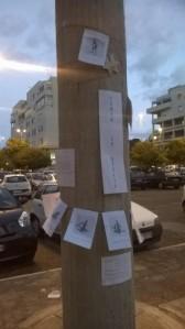 Piazza degli Olmi, laboratorio di rigenerazione urbana